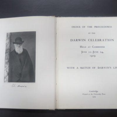 Darwin, Celebration, photo 1