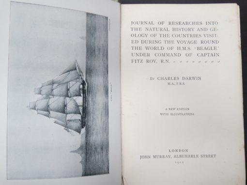 Charles Darwin, Journal, 1901