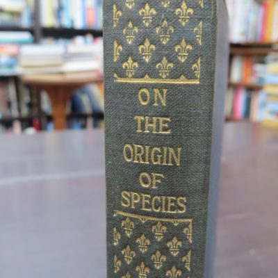 Charles Darwin, Origin Of Species, photo 4