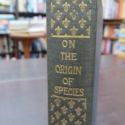 Charles Darwin, Origin Of Species, photo 4