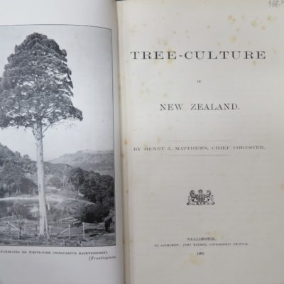 Mathews, Tree-Culture in New Zealand, McKay, Government Printer, Wellington, Natural History, New Zealand Non-Fiction, Dunedin Bookshop, Dead Souls Bookshop