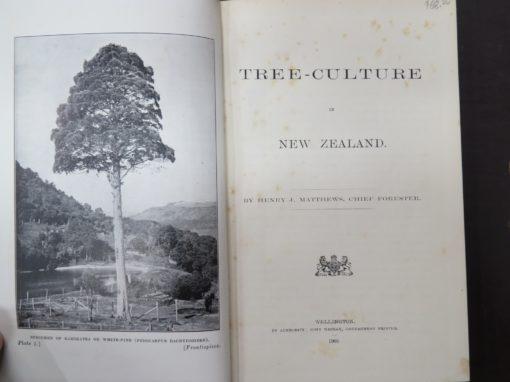 Mathews, Tree-Culture in New Zealand, McKay, Government Printer, Wellington, Natural History, New Zealand Non-Fiction, Dunedin Bookshop, Dead Souls Bookshop