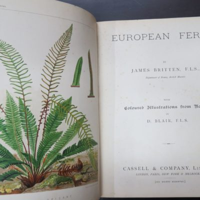 James Britten, European Ferns, Coloured Illustrations from Nature by D. Blair, Cassell and Company, London, Natural History, Science, Antiquarian, Dead Souls Bookshop, Dunedin Book Shop